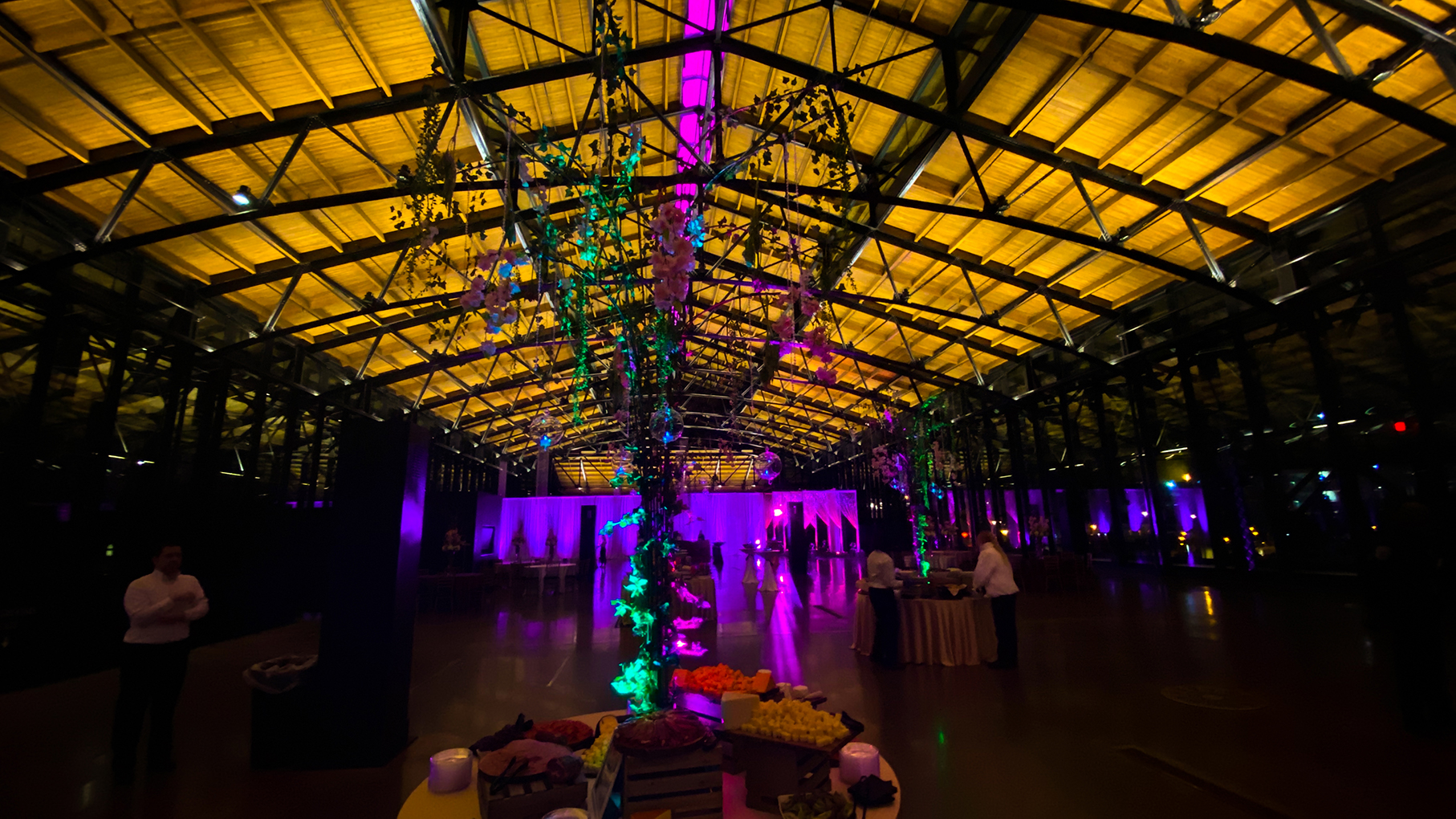 event lighting in charlottesville va